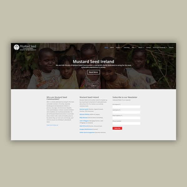 Mustard Seed Ireland Web Design